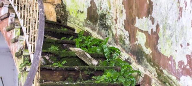 saskia-sassen-desurbanisation-2