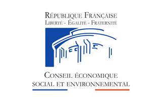 Conseil-eco-social-envi