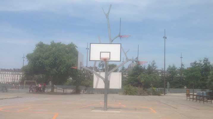 terrain-basket